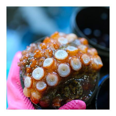 [지팔자] 8개의 다리를 가진 88한 타우린여왕 자연산돌문어 1kg내외 1~4마리 [남해바다향] 이미지