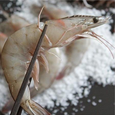 [아자픽] 신안명물 한번도 얼리지 않은 급냉장 생물 왕새우 (1kg 기준 30~39마리) 이미지