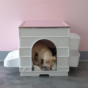 플라팜 잘나가개 큐브펫하우스 이미지
