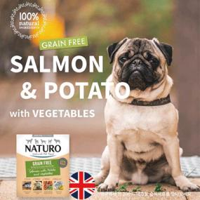 네추로 그레인프리 연어+감자+야채 영국산 강아지 영양습식사료 이미지