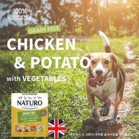 네추로 그레인프리 치킨+감자+야채 영국산 강아지 영양습식사료 이미지