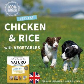 네추로 라이트 저지방,저칼로리 닭고기+현미+야채 영국산 강아지 영양습식사료 이미지