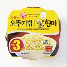 [아자마트] [오뚜기] 맛있는 오뚜기밥 찰현미 3입 묶음(210g*3) 이미지